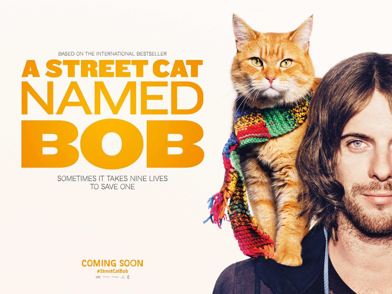 Street Cat Named Bob Belfast